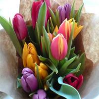 купить постельное белье с доставкой по Украине, что подарить на 8 марта